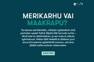 Tallink Silja -peliratkaisu